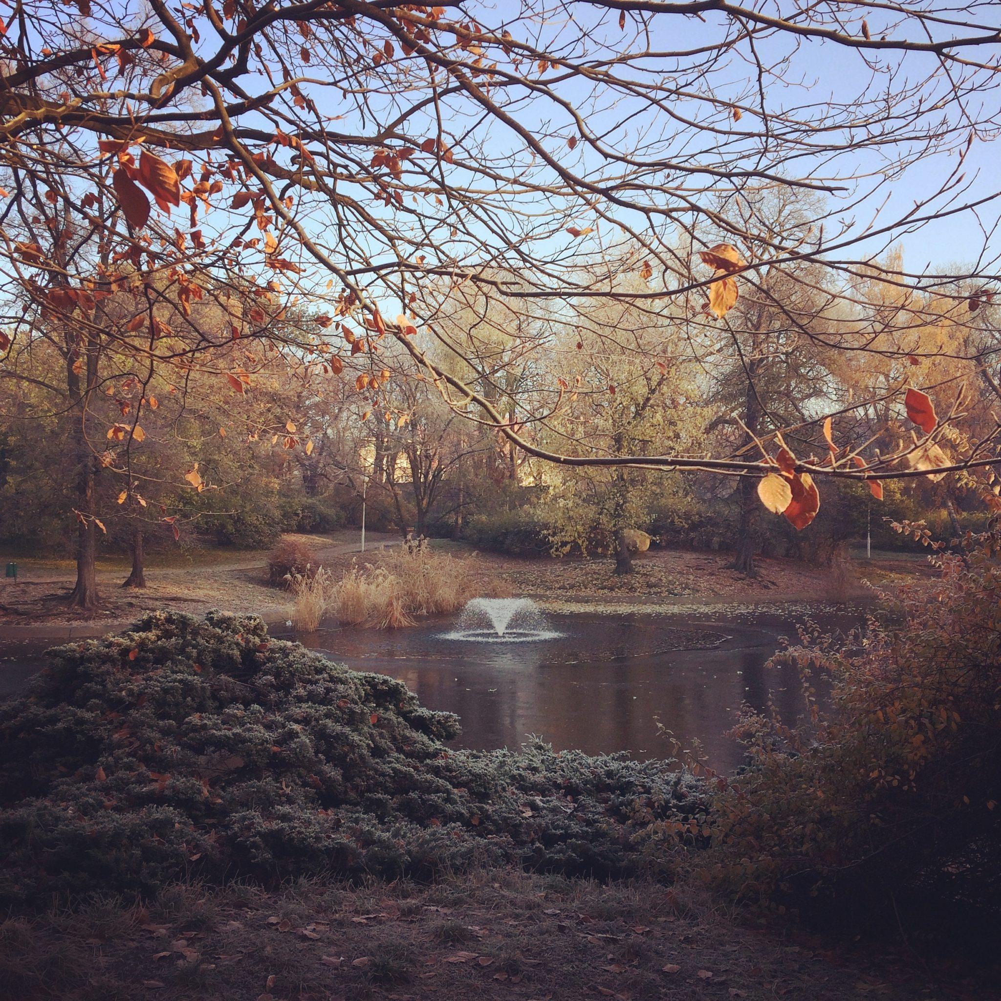 8 sposobów na przetrwanie jesieni