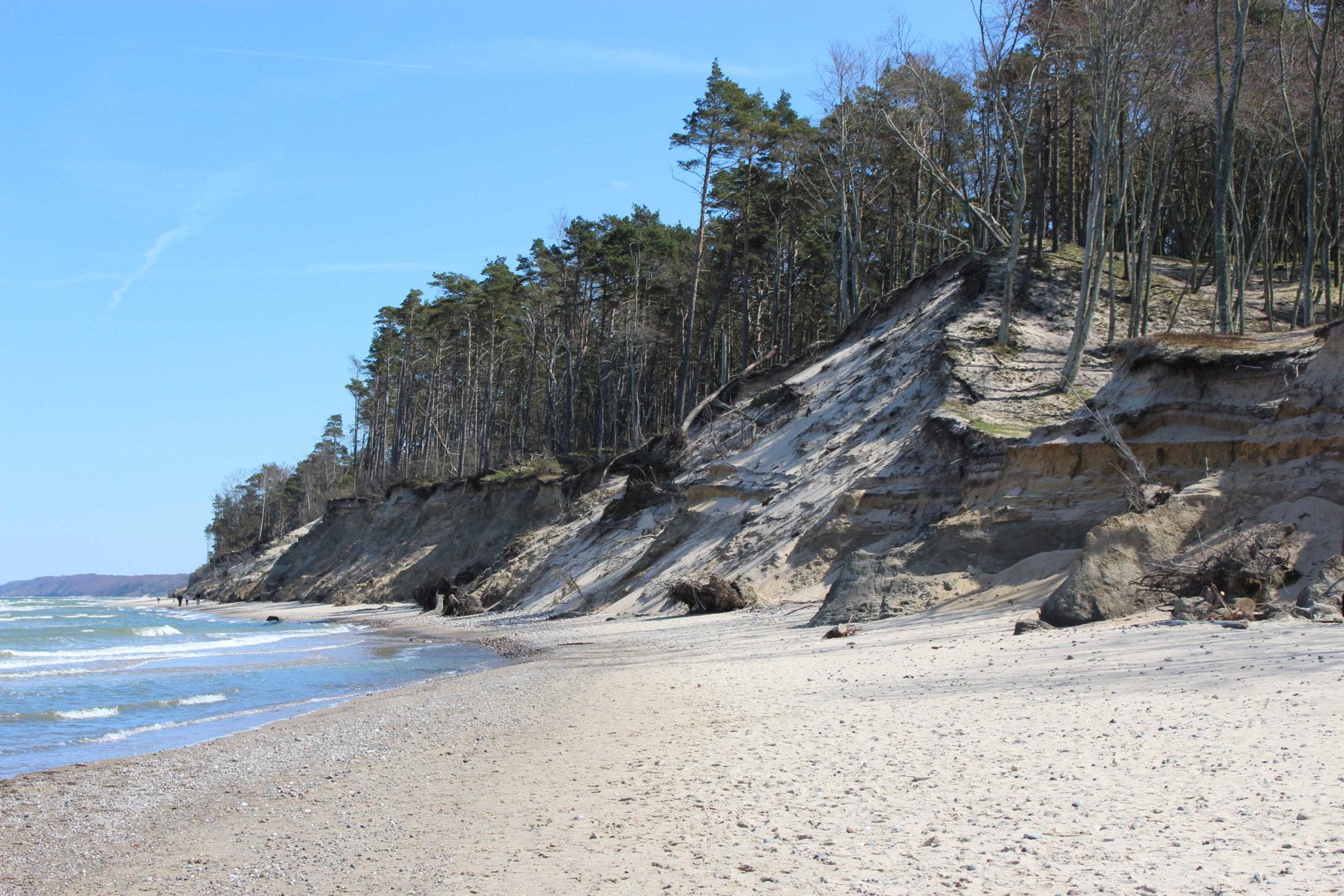 Klif w Orzechowie Morskim