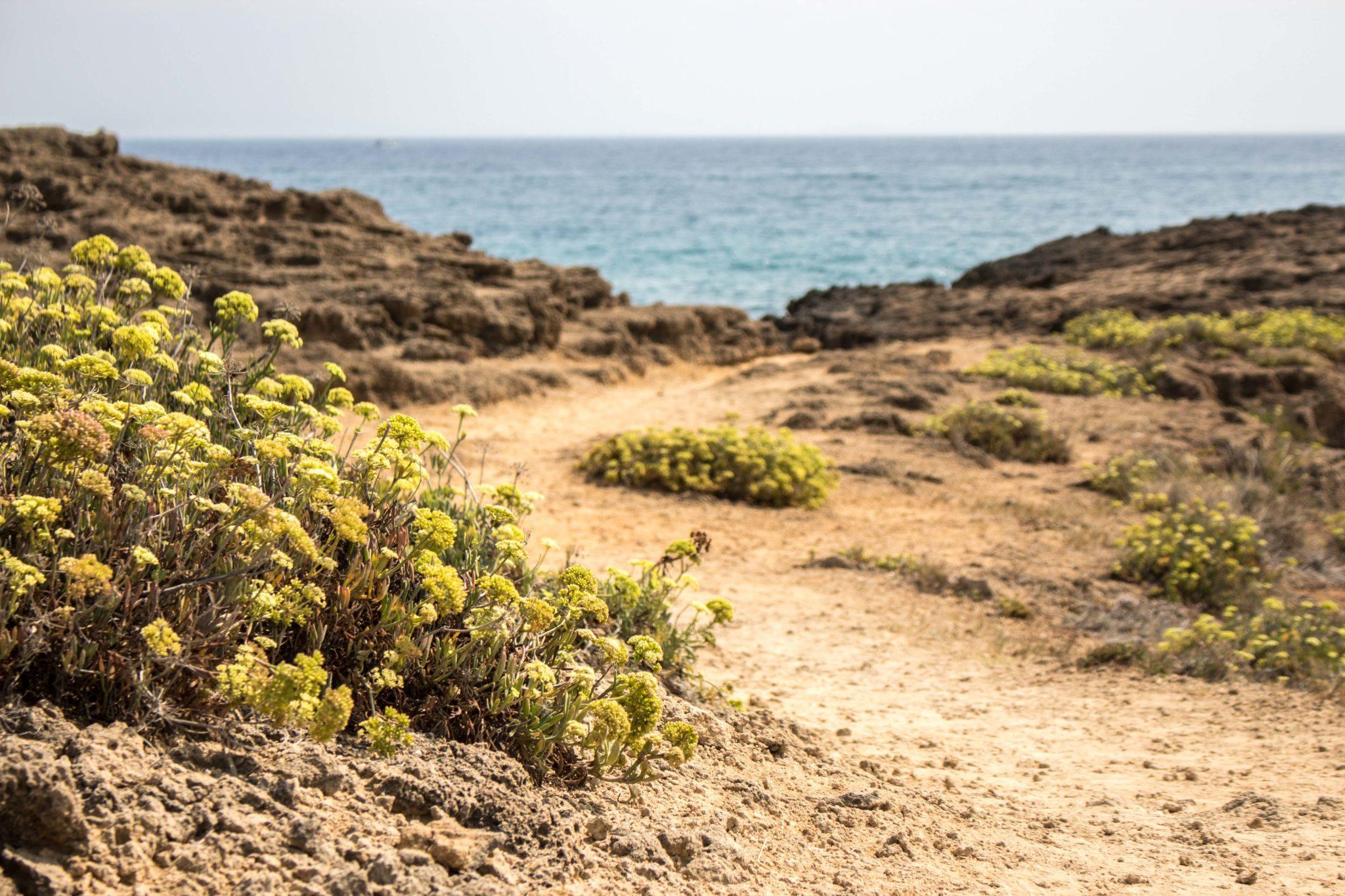 Plaża Agios Nikolaos Zakynthos