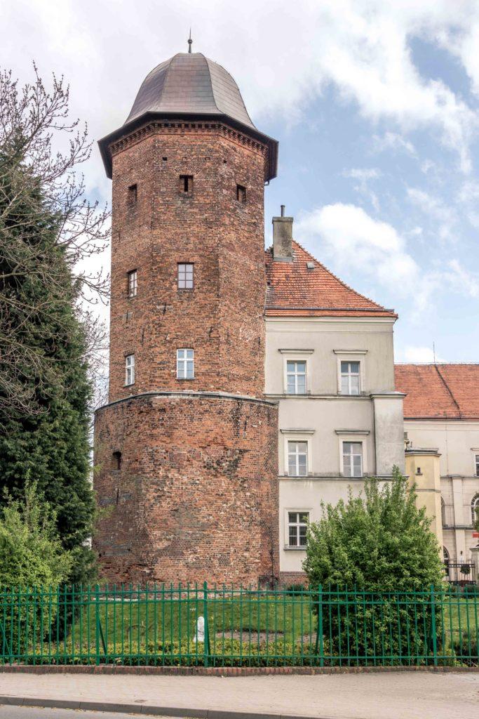Zamek w Koźminie Wielkopolskim
