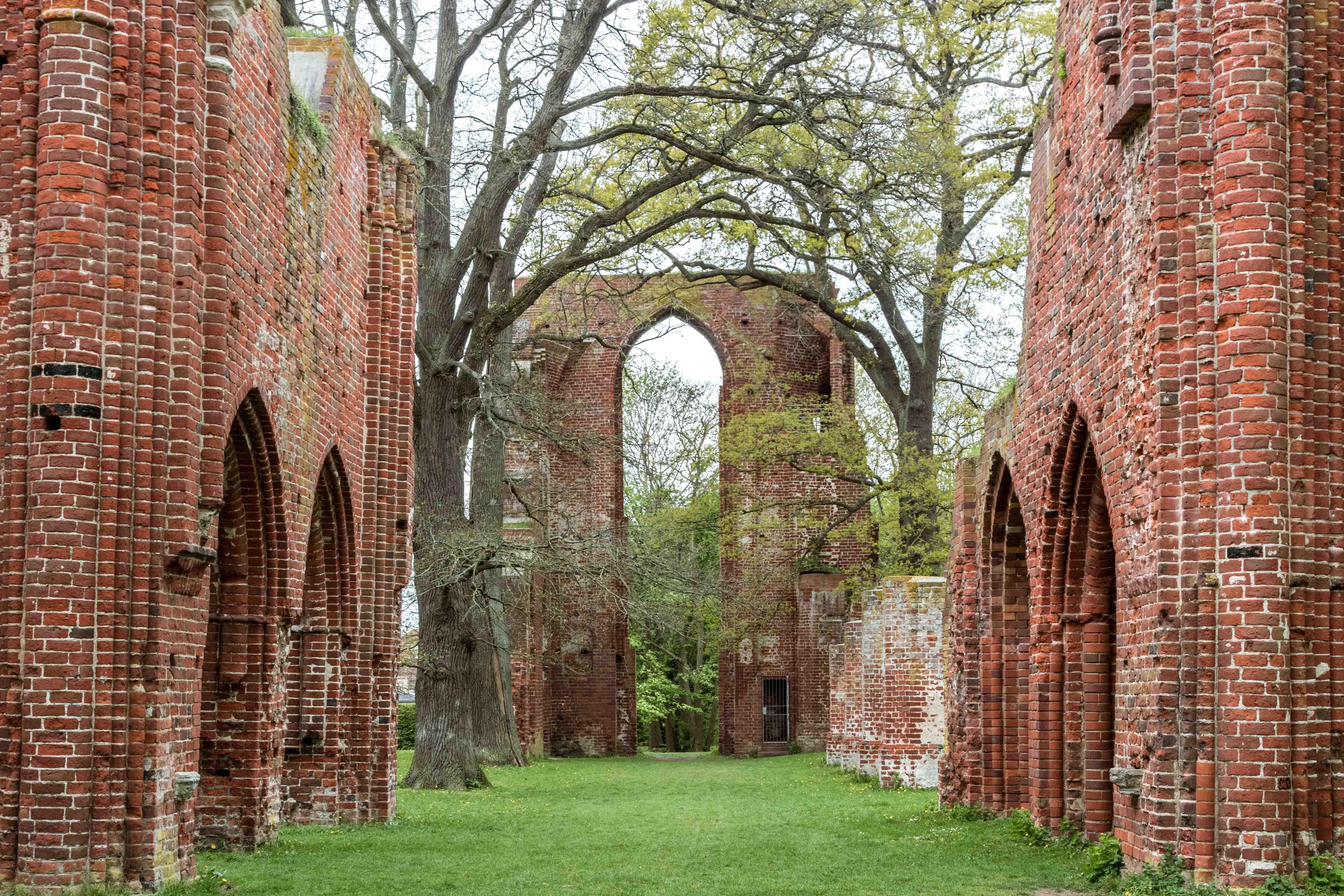 Romantyczne ruiny klasztoru Eldena